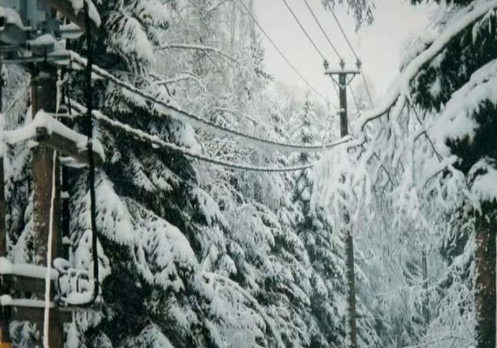 защищенные провода СИП-3 в снегу и гололеде