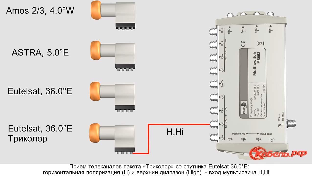 схема подключения портов на спутнике Eutelsat 36 для триколов тв к мультисвитчу