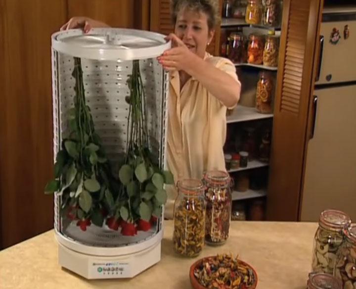 сушка цветов в высокой сушилке для овощей и фруктов