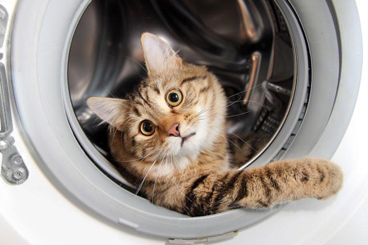 повреждения в стиральной машинке