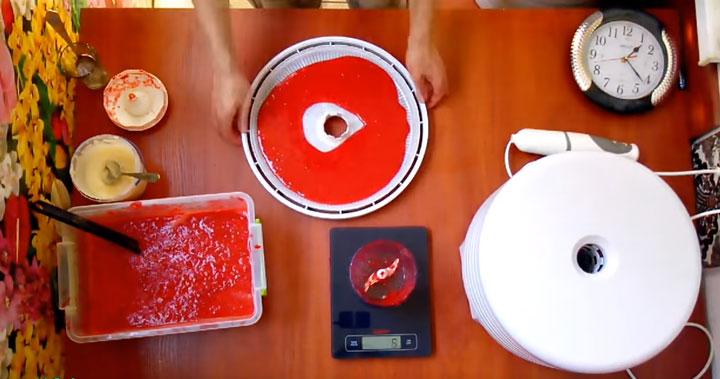 приготовление пастилы из ягод и фруктов на электросушилке для овощей и фруктов