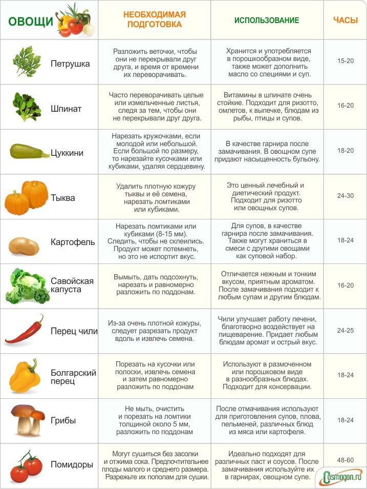 сколько часов нужно для сушки на электросушилке для разных овощей