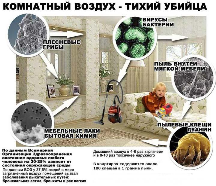 последствия сухого воздуха в комнате