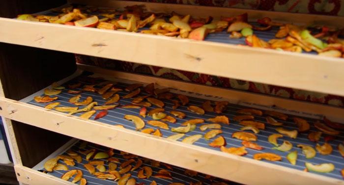 можно ли выкладывать на поенку фрукты при сушке на инфракрасной пленке