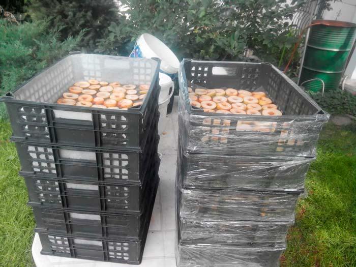 самодельная сушилка для фруктов своими руками из ящиков